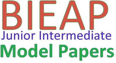 BIEAP 1st /Jr Inter Model Papers 2019