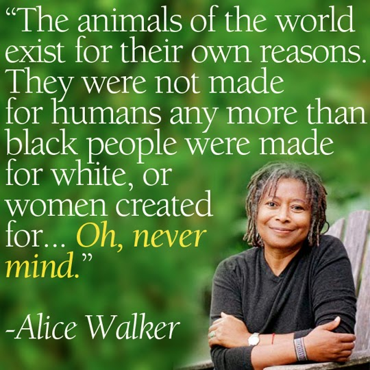 Image result for Alice Walker blogspot.com