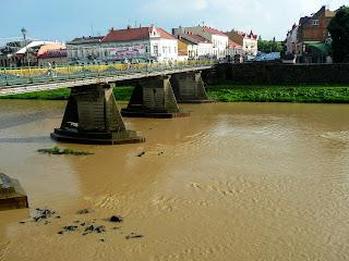 Ужгород. Пішохідний міст через річку Уж