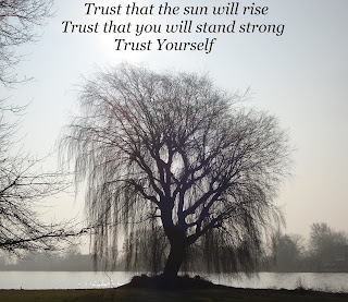 Image showing the silhouette of a willow tree with the sun behind it, with text: Trust that the sun will rise, Trust that you will stand strong, Trust yourself