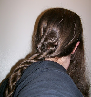 Two hair ropes twisted together.