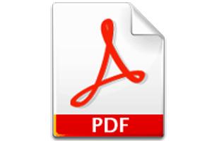 Documento en PDF como formato de libro electrónico