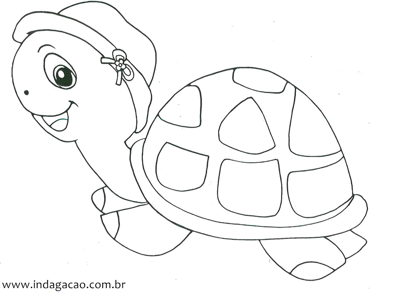 Desenho De Tartaruga Para Colorir Indagacao