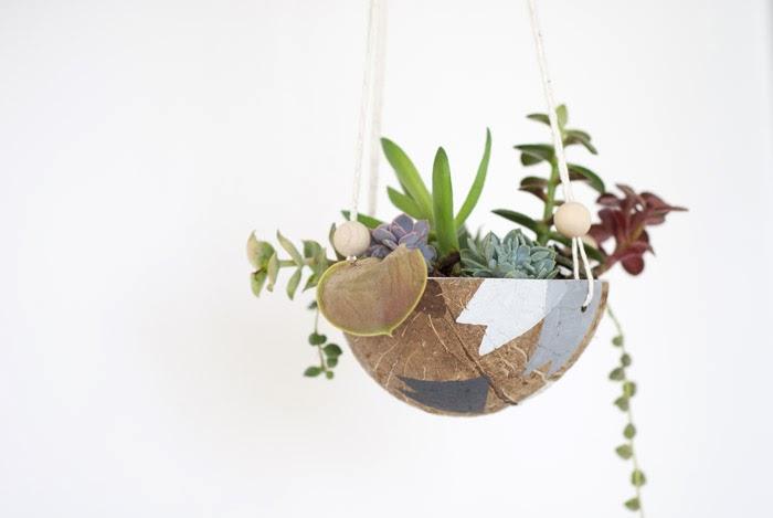 Weekend Project Diy Coconut Hanging Planter Poppytalk