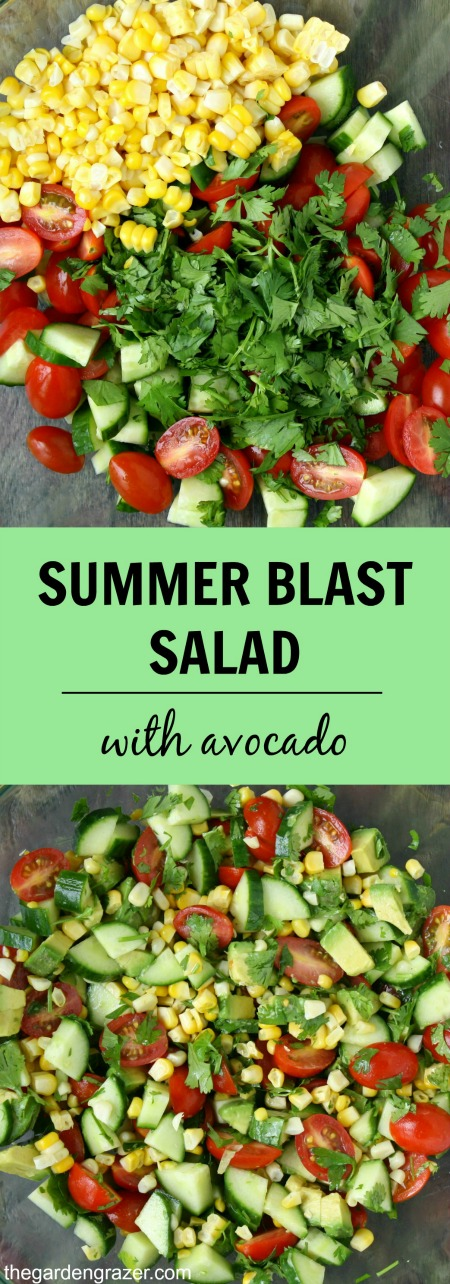 Summer Blast Salad with Avocado