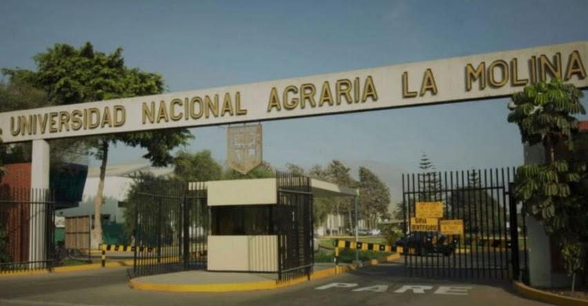 UNALM: Universidad Nacional Agraria La Molina se convierte en la primera universidad pública en recibir el licenciamiento