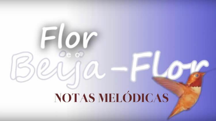 Flor e o Beija-Flor - Notas melódicas para instrumentos de solo