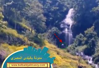 بالفيديو كائن اسطورى يظهر فى غابات اندونيسيا