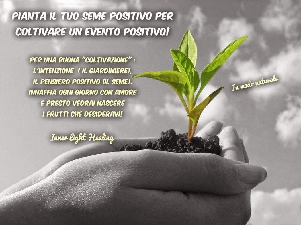 Amato Pianta il tuo seme positivo per coltivare un evento positivo  BT57