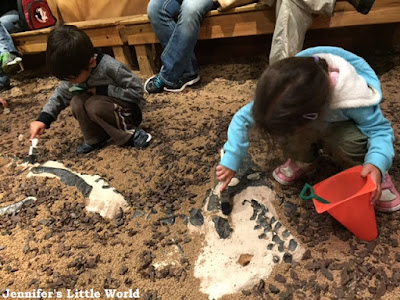 Digging for dinosaur bones at the Orlando Science Center