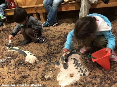 Digging for dinosaur bones at the Orlando Science Center