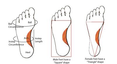 transgender tendon change jpg 1200x900