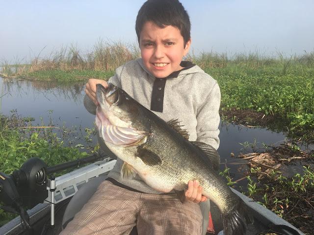 Okeechobee fishing report for okeechobee bass fishing for Big bass fishing