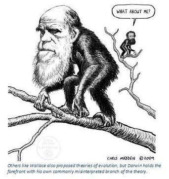Cherish Wisdom: On the Originality of Darwin by Means of
