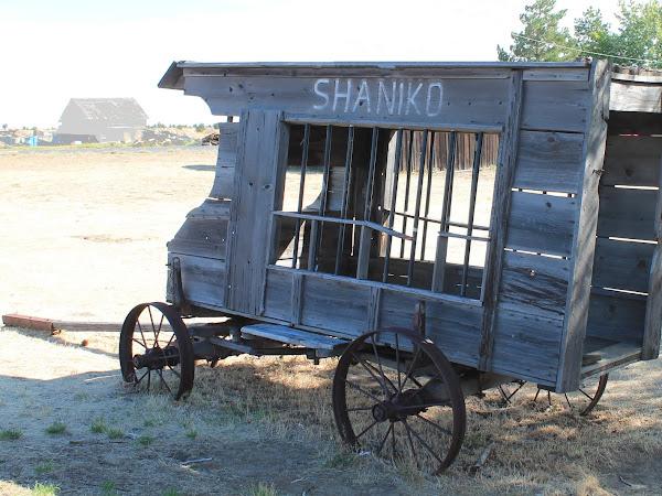 Ghosttown Shaniko
