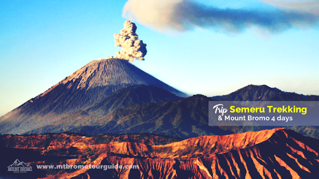 Trip Semeru Trekking and Mt Bromo 4 Days