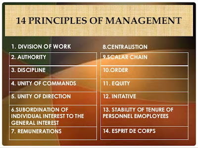 explain and analyze henri fayol s principles management Fayol's contributions were perhaps even more important to modern management his functions and principles of management  principles goal systems international.