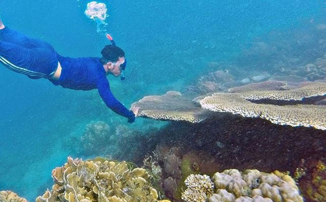 Terumbu Karang Pulau Langkadea, Kabupaten Pangkajene dan Kepulauan