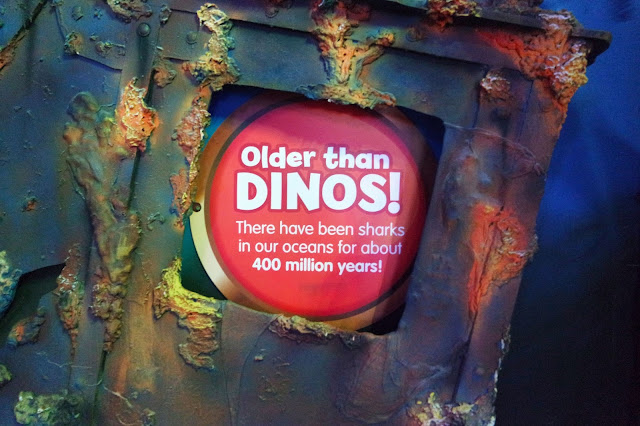 red circular sign reading 'older than dinos! sharks have been in our oceans for 400 million years'