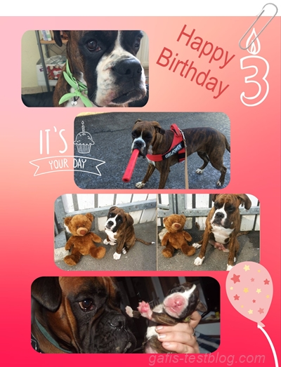 Amys 3. Geburtstag