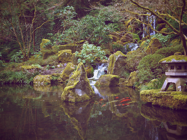 Habit of art portland 39 s garden sanctuary - Portland japanese garden free day ...