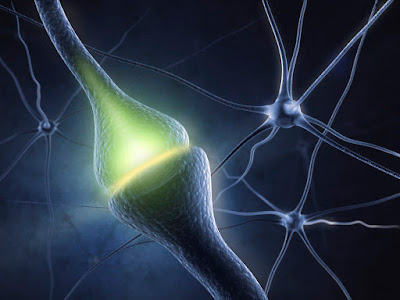 The Types and Causes of Neuropathy - El Paso Chiropractor