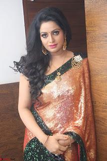 Udaya Bhanu lookssizzling in a Saree Choli at Gautam Nanda music launchi ~ Exclusive Celebrities Galleries 083.JPG
