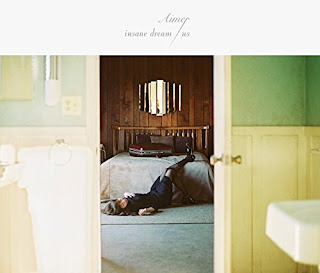 Aimer - insane dream 歌詞