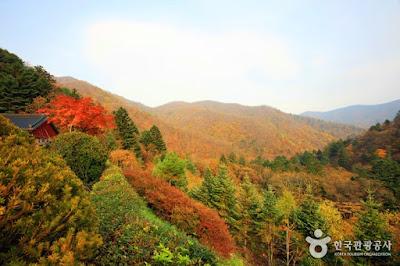 http://english.visitkorea.or.kr/enu/ATR/SI_EN_3_1_1_1.jsp?cid=264215