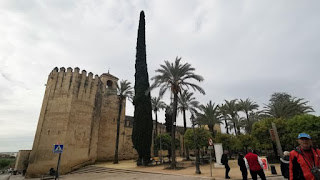 Córdoba, Alcázar de los Reyes Cristianos.