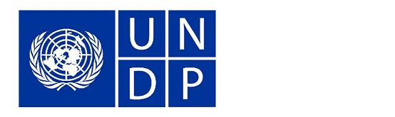 Vacancies at Women's Leadership and Political Participation (WLPP)