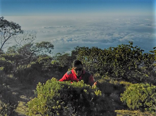 Wisata Puncak Gunung Ciremai