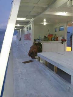 Kapal mancing di Palu Sulawesi Tengah