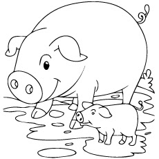 Cute Pig And Piglet Coloring Pages
