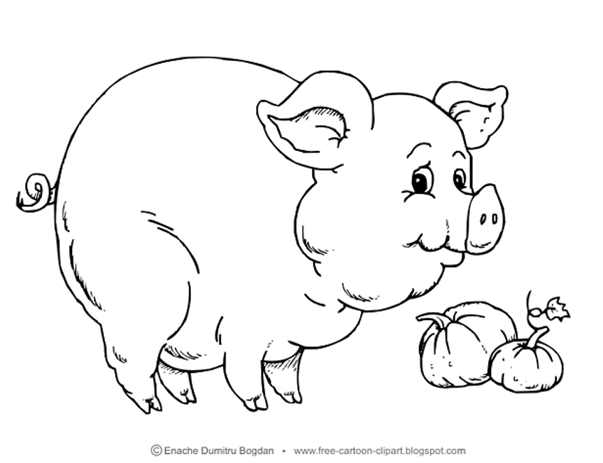Free Cartoon Illustrations Clipart No Watermark Images Pig