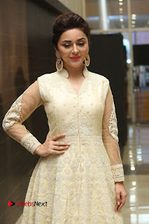 Actress Ragini Nandwani Pictures in Long Dress at Siddhartha Audio Release  0064.JPG