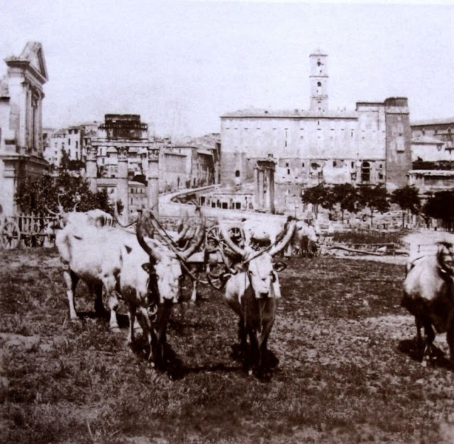 Fotografías de Italia en el siglo XIX