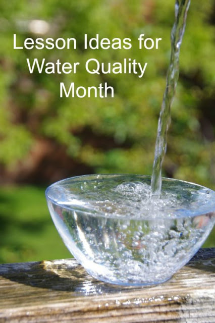 Lesson Ideas for Water Quality Month (August)