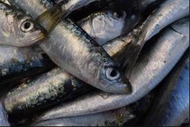 vitamina b12 y sardinas