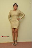 Actress Pooja Roshan Stills in Golden Short Dress at Box Movie Audio Launch  0029.JPG