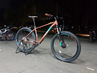 Polygon Xtrada 6.0 Brown