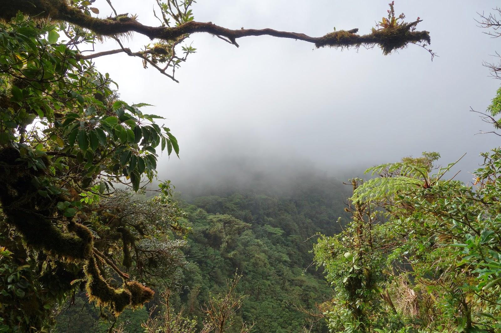 costa rica parc national monteverde quoi faire