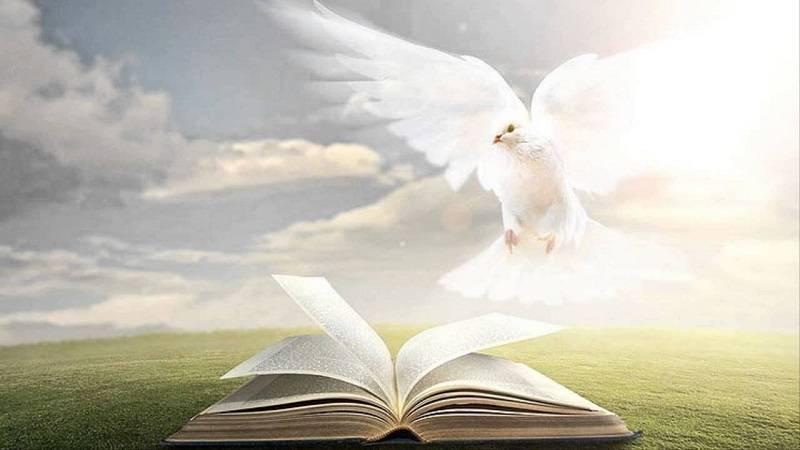 Um Estudo do Espírito Santo (4)