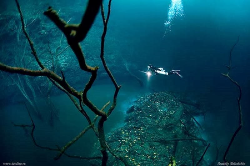 Inside is an underwater river, flowing on the bottom of the ocean floor.