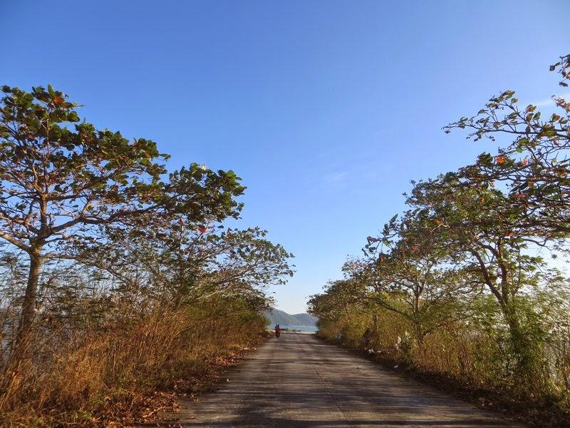 Прямая дорога никуда