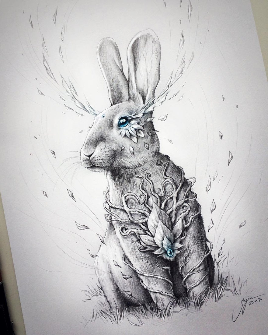 09-Rabbit-Soul-Jonas-Jödicke-jojoesart-Fantasy-Animal-Drawings-with-Souls-of-Nature-www-designstack-co