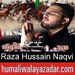 https://www.humaliwalyazadar.com/2018/09/raza-hussain-naqvi-nohay-2019.html