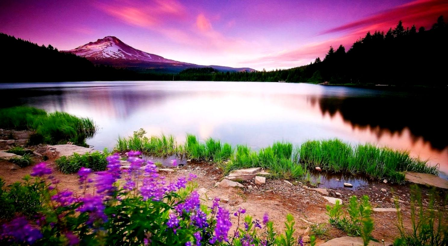 Nature Wallpaper For Pc Desktop Hd Wallpapers Background