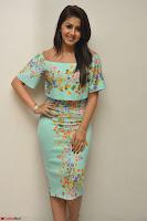 Nikki Galrani in Cute Dress Dress At Marakathamani Success Meet ~  Exclusive 024.JPG
