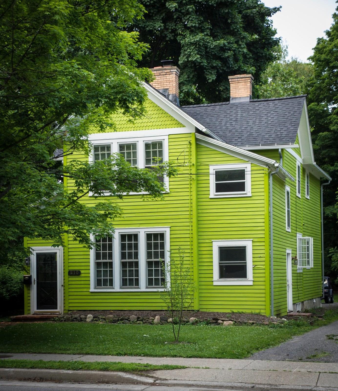 The Coloured House.Buffalo And Beyond Lime Coloured House